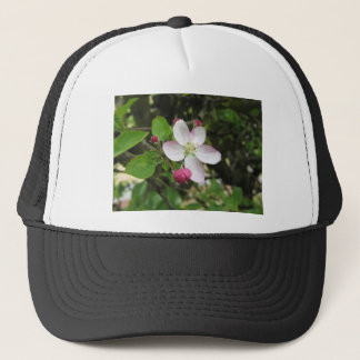 Pink apple flower in spring . Tuscany, Italy Trucker Hat