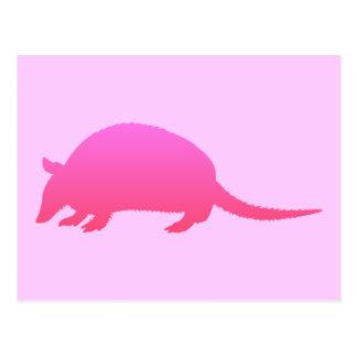 Pink Armadillo Post Card