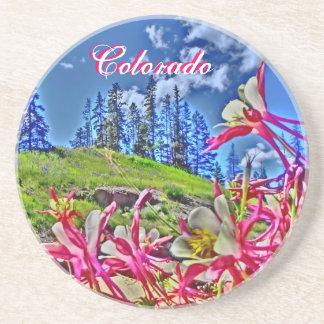 Pink artistic Colorado columbine scenic coasters