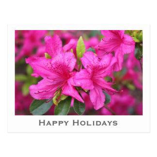 pink azalea flowers Christmas, holiday gift Postcard