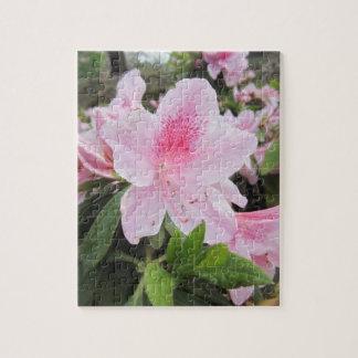 Pink Azalea Flowers - Puzzles