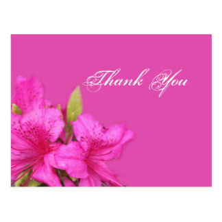 Pink azalea flowers thank you postcards