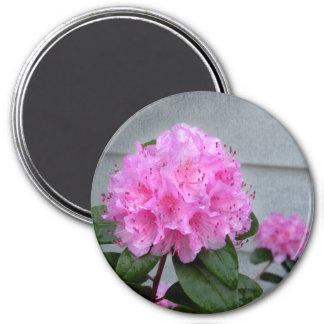 Pink Azalea Magnet