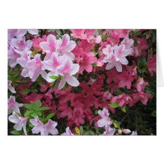 Pink Azalea NoteCard