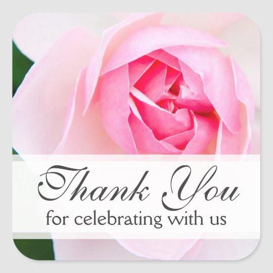 Pink beautiful rose wedding thank you thanks square sticker