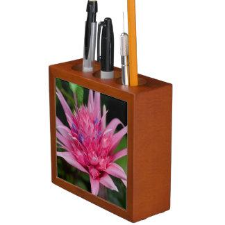 Pink Beauty Desk Organizer