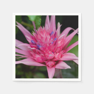 Pink Beauty Disposable Napkin