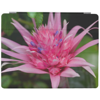 Pink Beauty iPad Cover