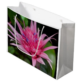 Pink Beauty Large Gift Bag
