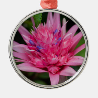 Pink Beauty Metal Ornament
