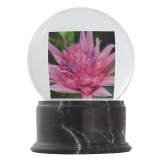 Pink Beauty Snow Globe