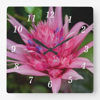 Pink Beauty Square Wall Clock