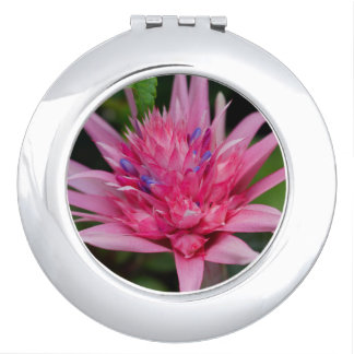 Pink Beauty Travel Mirrors