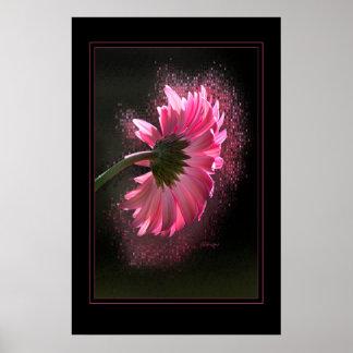 Pink Berber Daisy 23x35 Poster