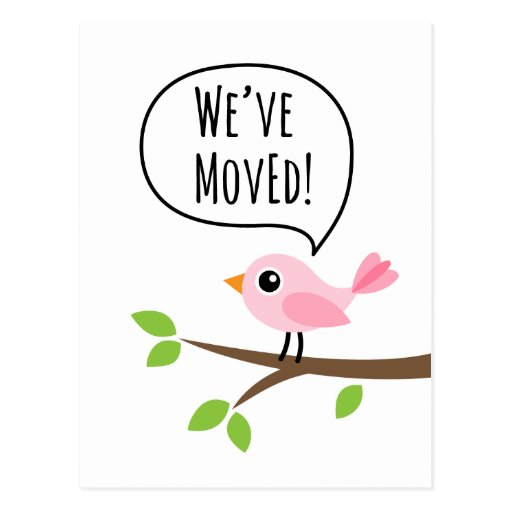 Pink bird we have moved change of address moving postcards