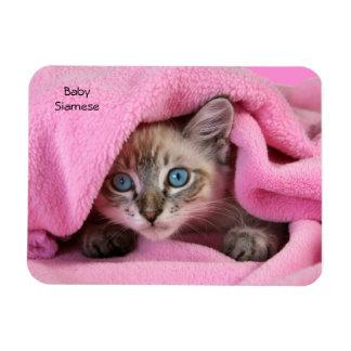 Pink Blankie Baby Siamese Cat Magnet