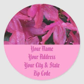 Pink Blooms Classic Round Sticker