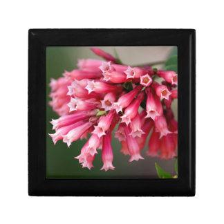 Pink Blooms Gift Box