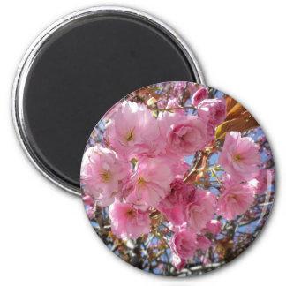 Pink Blossom 2 Inch Round Magnet