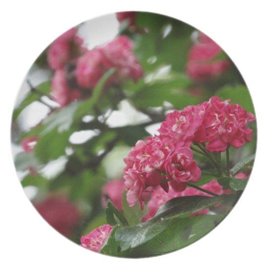 Pink Blossom Photo Melamine Plate