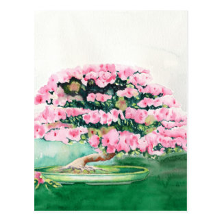 Pink Bonsai Postcard