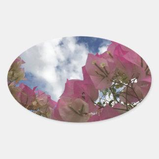 Pink bougainvillea oval sticker