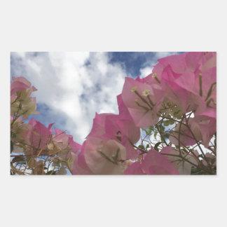 Pink bougainvillea sticker