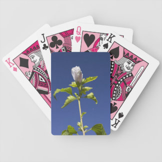 Pink Bud in a Blue Sky Deck Of Cards