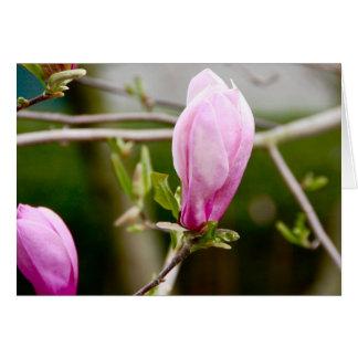 Pink Buds Card