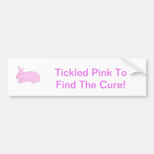 Pink Bunny Rabbit Bumper Stickers