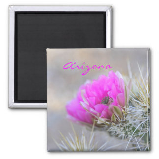 pink cactus bloom,Arizona Magnet