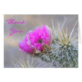 pink cactus blooms,thank you card