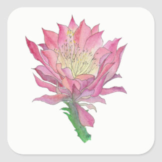 Pink Cactus Flower Square Sticker