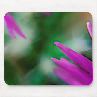 Pink Cactus Petals Mouse Pad