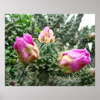 Pink Cactus Print