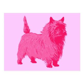 Pink Cairn Terrier Postcard