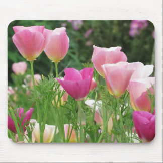 Pink Californian Poppies Mouse Pad