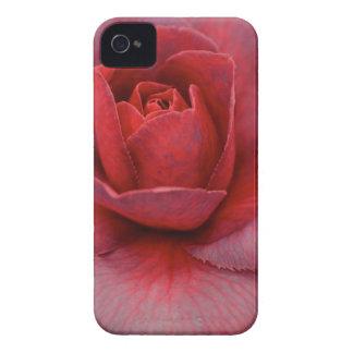 Pink Camellia iPhone Case