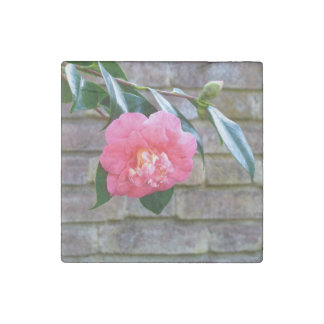 Pink Camellia Marble Magnet Stone Magnets