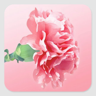 Pink carnation square sticker