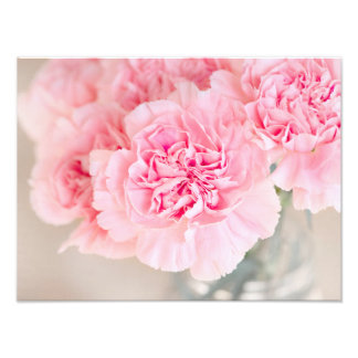 Pink Carnations Photo Print