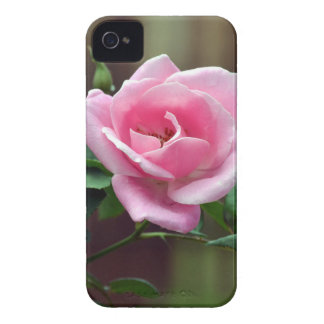 pink Case-Mate iPhone 4 case