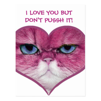 PINK CAT HEART, FUNNY SERIOUS PINK CAT IN A HEART POSTCARD