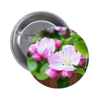 Pink cherry blossom pin
