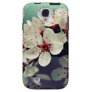 Pink Cherry Blossom, Cherryblossom, Sakura