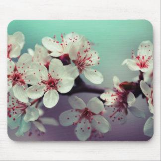 Pink Cherry Blossom, Cherryblossom, Sakura Mouse Pad
