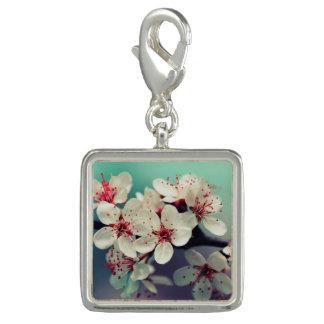 Pink Cherry Blossom, Cherryblossom, Sakura Photo Charms