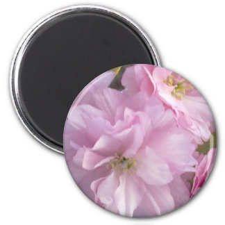 Pink Cherry Blossom Magnet