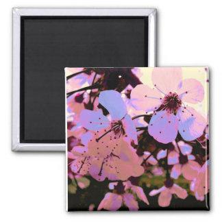 Pink Cherry Blossom Magnet