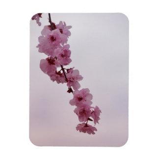 Pink Cherry Blossom Flexible Magnet